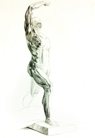 male anatomy:  Original pencil  or drawing charcoal, and  hand drawn painting or  working  sketch of a man with muscular body.Free composition