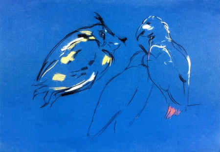 rapacious:  Original pastel and  hand drawn painting or  working  sketch of owl and falcon .Free composition of birds of prey. rapacious birds.  Stock Photo