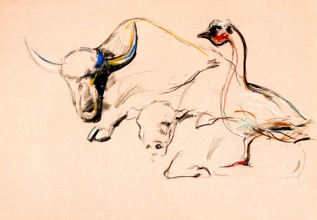 Original pastel and  hand drawn painting or  working  sketch of buffalo and duck.Free composition photo