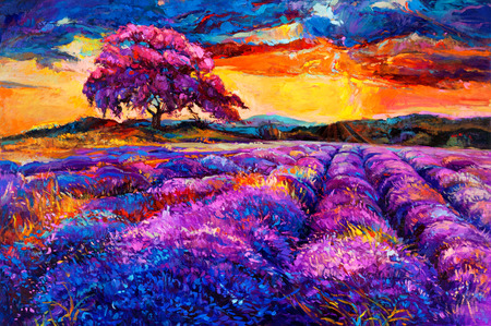 fascinating: Original oil painting of lavender fields on canvas.Sunset landscape.Modern Impressionism Stock Photo