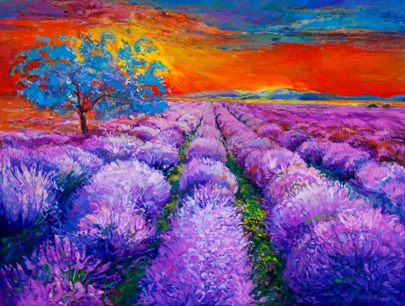 fascinated: Original oil painting of lavender fields on canvas.Sunset landscape.Modern Impressionism Stock Photo