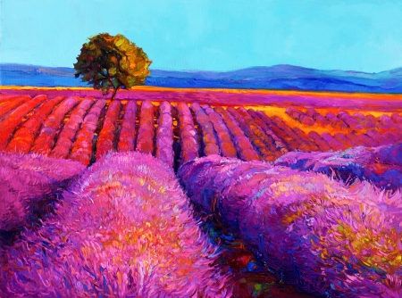 grass  flowers: Original oil painting of lavender fields on canvas.Sunset landscape.Modern Impressionism Stock Photo