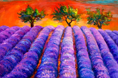 lavender oil: Original oil painting of lavender fields and trees on canvas.Sunset landscape.Modern Impressionism Stock Photo