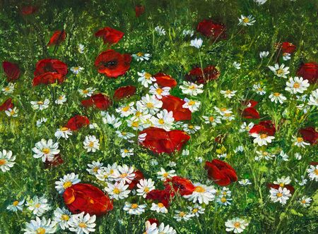 papaver: Original oil painting of Opium poppy( Papaver somniferum) and daisy field on canvas.Modern Impressionism