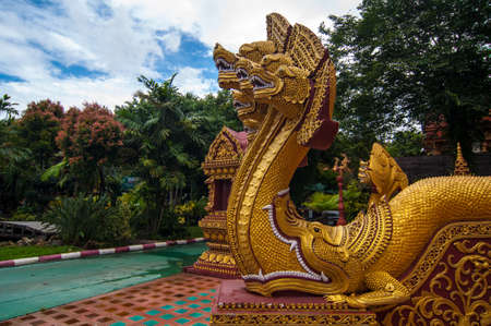taoist: Dragon  in Thailand