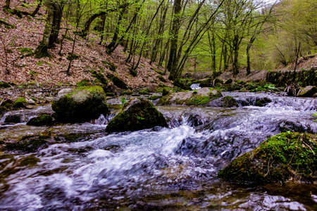 Flowing water over Rocks in Nature park Papuk, Jankovac. Croatia, Europe Stock Photo