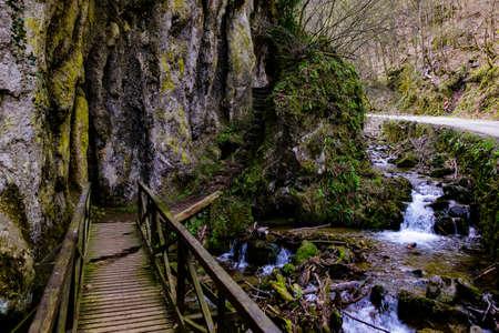 Wooden bridge and walking path in Nature park Papuk, Jankovac. Croatia, Europe Stock Photo