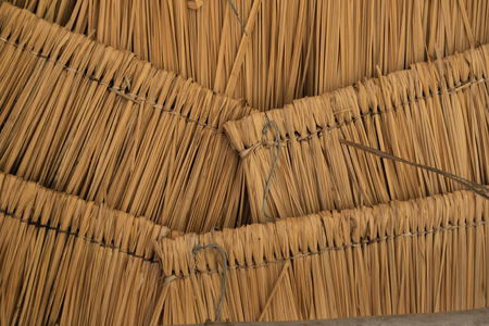 dry leaf: layer of Thatched roof