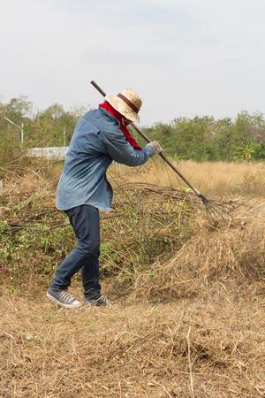 turf pile: a man rake shoveling dry grass