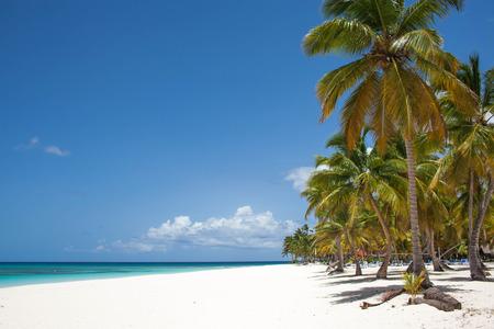 caribe: caribe