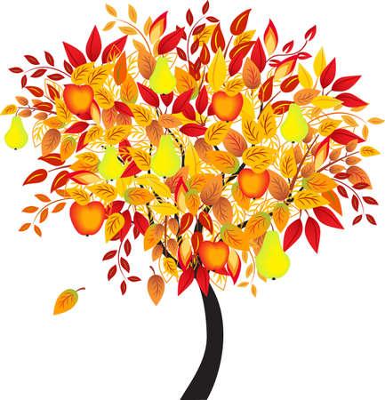 arbre automne: Arbre d'automne, Autumn Tree
