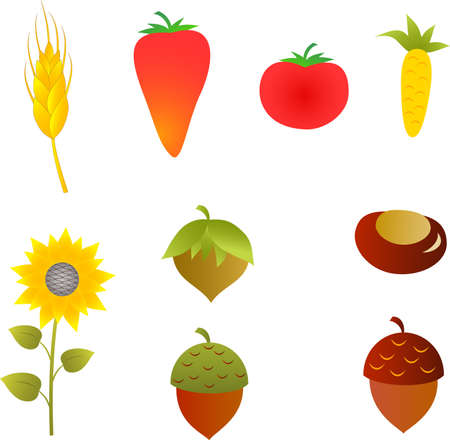 Fall Vegetables and Fruits Ilustração