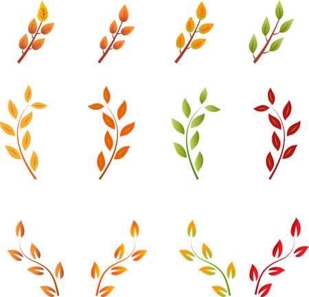 Fall Leaf Vectors, Autumn Leaf Vectors, Leaf Vector