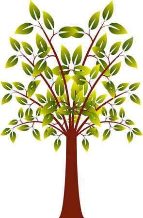 白い背景の上の緑の葉分離ツリー ホリデージャック