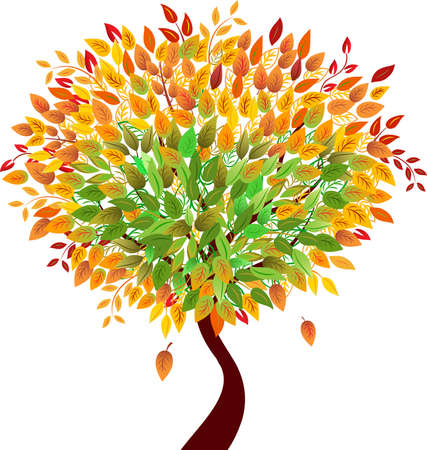 オレンジと Greean ツリー、季節の木、木のベクトルを葉します。  イラスト・ベクター素材