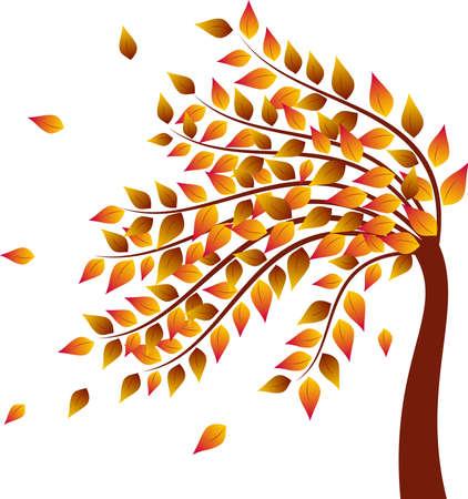 arbre automne: Les feuilles jaunes automne arbre, arbre Vecteurs