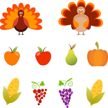 Turkey, Isolated Thanksgiving Turkey Vectors, Apples, Pear, Pumpkin and Grape Vectors Çizim