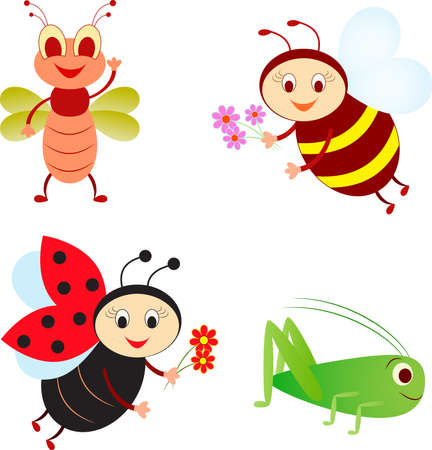 Isolated Bee, Ladybug, Fly and Grasshopper Vectors Illustration