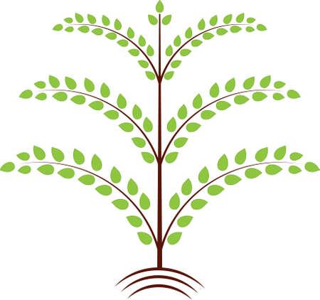 Isolated Green Leaves Tree Vector, Tree Illustration 向量圖像