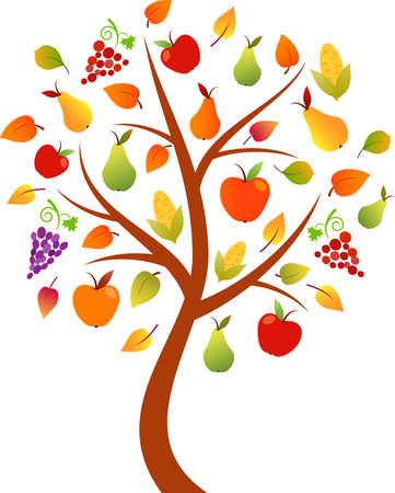 arbre automne: Arbre d'automne vecteur, Pommier, Poirier, Automne Vecteurs