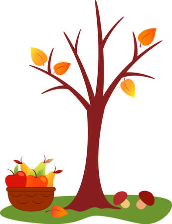tree in autumn: Fall Tree Vector, Fruit Basket