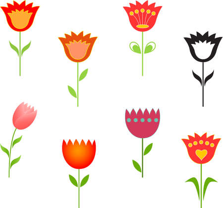 tulipan: Izolowane kwiat Wektory, Tulip Wektory
