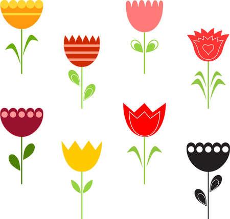 Flower, Tulips
