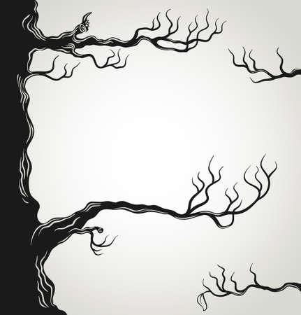 arboles secos: Las ramas negras de árboles silueta aislados sobre fondo blanco