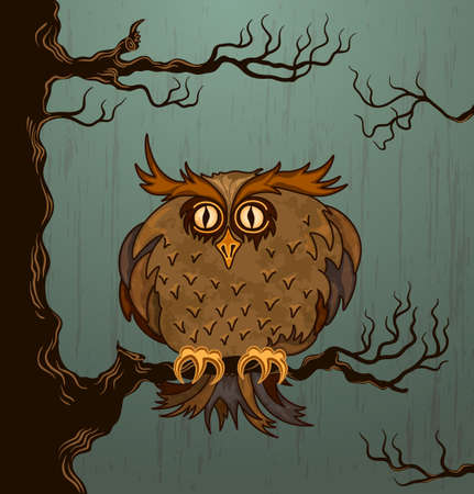 Cute owl Stock Vector - 15362573