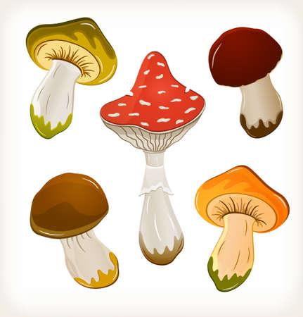 inedible: Mushroom set