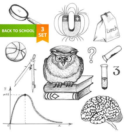 cerebro blanco y negro: Conjunto de elementos de dibujo volver a la escuela dibujado a mano ilustración vectorial
