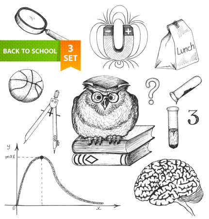Set of sketch elements  Back to school  Hand-drawn vector illustration  Vector