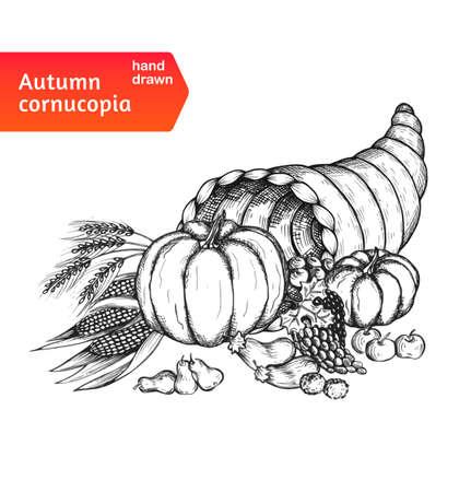 cuerno de la abundancia: Cornucopia. Cuerno de la abundancia con la cosecha del otoño símbolos. Tarjeta a mano para el día de Acción de Gracias en un estilo de dibujo. Aislado en el fondo blanco. Ilustración del vector.