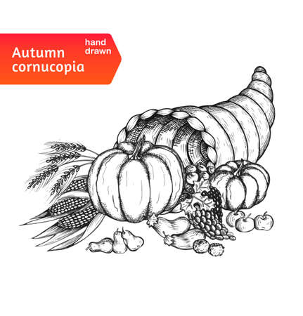 Cornucopia. Horn of plenty with autumn harvest symbols. Hand-drawn card for Thanksgiving day in a sketch style. Isolated on white background. Vector illustration. Illustration