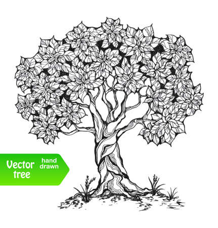 Alone tree with leaves in a stylized style. Grass on the ground. Black and white colors. Isolated on white background. Vector illustration.