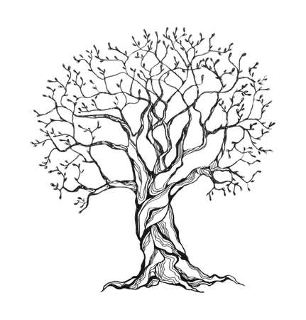 pencil drawn: Winter tree in a stylized style. Black and white colors. Isolated on white background. Vector illustration.