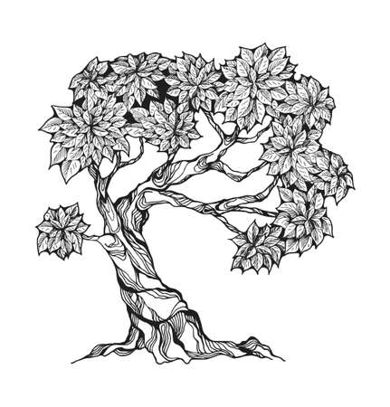 Gnarled tree with leaves in a stylized style. Stock Illustratie