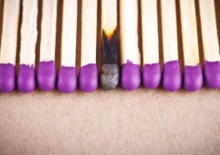 A row of the whole matches. One match burned down Stock Photo - 8920421