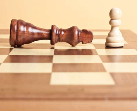 Chessmen. A pawn and the won king photo