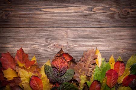 Wooden background with autumn leaves Standard-Bild