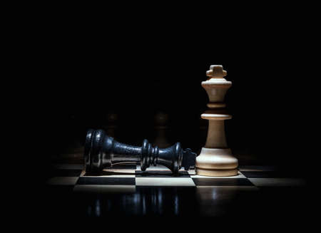 chess king lost the game