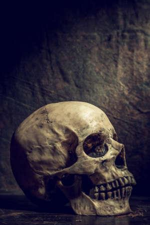Old skull on vintage background