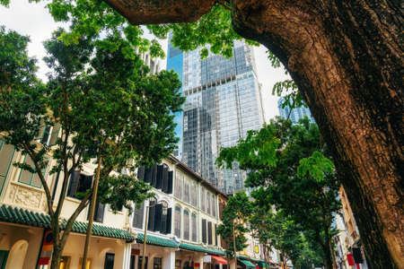 Green trees on street with colonial old buildings against modern glass architecture in Singapore