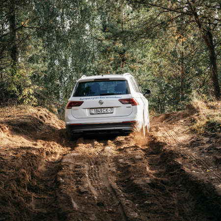 Minsk, Belarus - September 20, 2019: Volkswagen Tiguan 4x4 rides cross country in forest. Back view