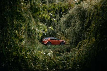 Minsk, Belarus - September 24, 2019: Land Rover Discovery Sport in autumn dense forest forest landscape. Editorial