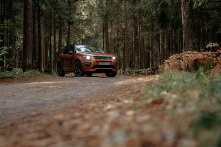 Minsk, Belarus - September 24, 2019: Land Rover Discovery Sport on icountry road n autumn forest landscape.