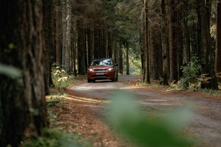 Minsk, Belarus - September 24, 2019: Land Rover Discovery Sport on country road n autumn forest landscape.