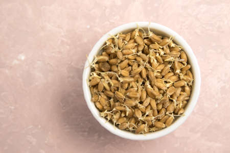 Sprouted wheat on a light background. toned Stock Photo - 115253959