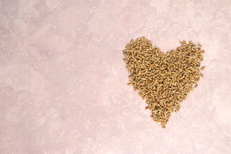 Sprouted wheat in shape of heart on a light background. toned