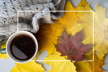 Autumn leaves, cup of coffee, warm scarf on the table. Seasonal, book reading, Sunday relaxing and still life concept. Selective focus. Banque d'images